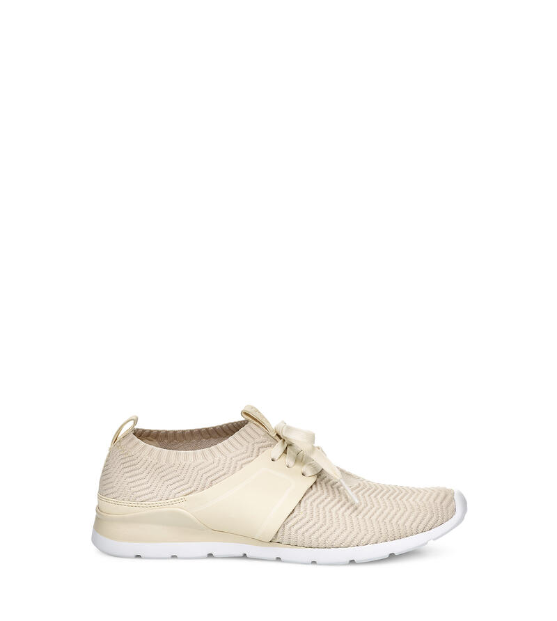 Willows Trainer